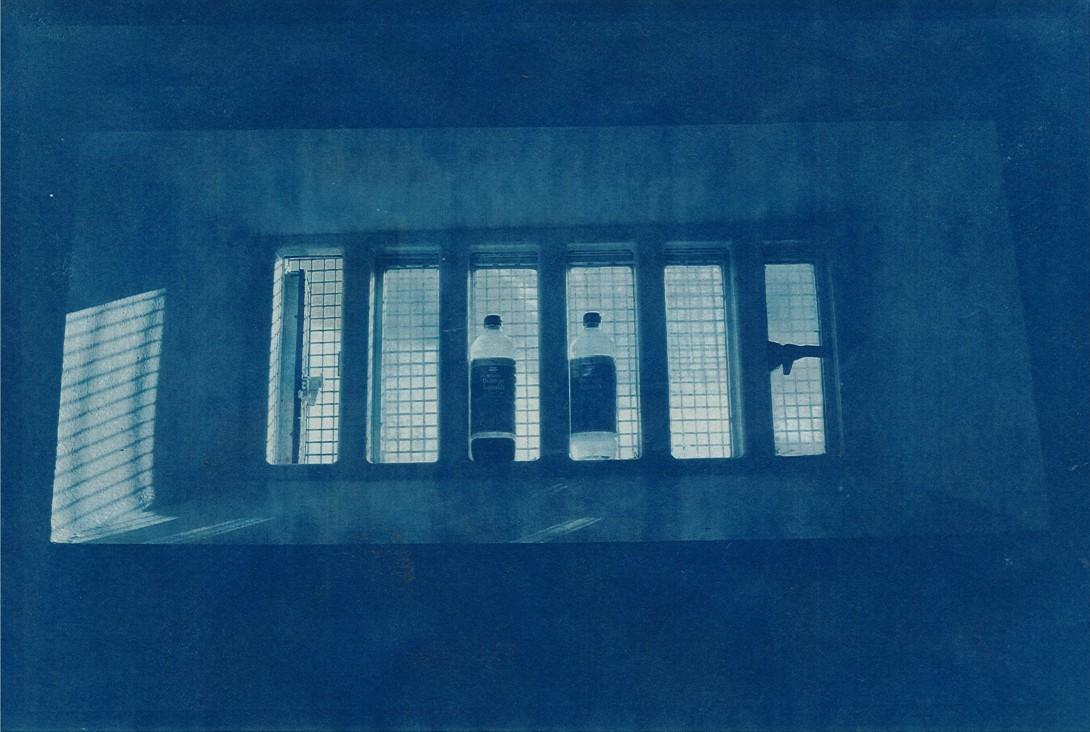 cyanotype_01_lr