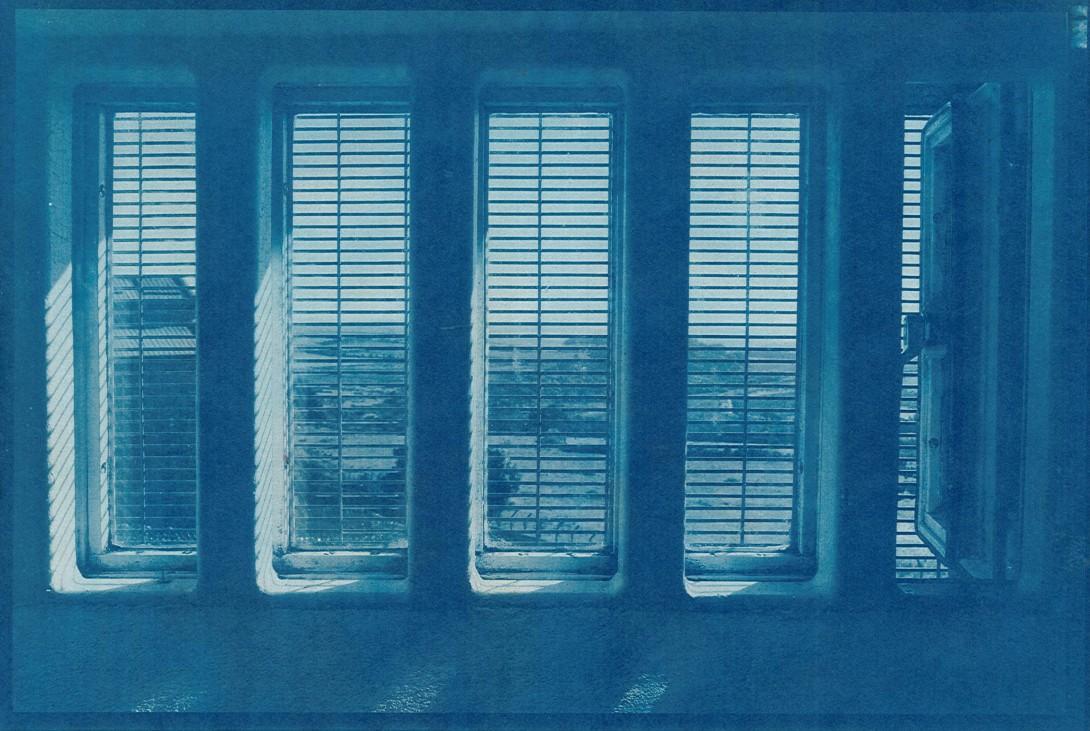 cyanotype_02_lr