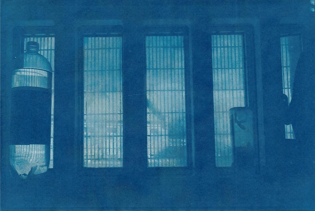 cyanotype_05_lr